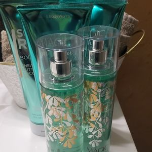 Bath and Body Works lot. Magic in the Air